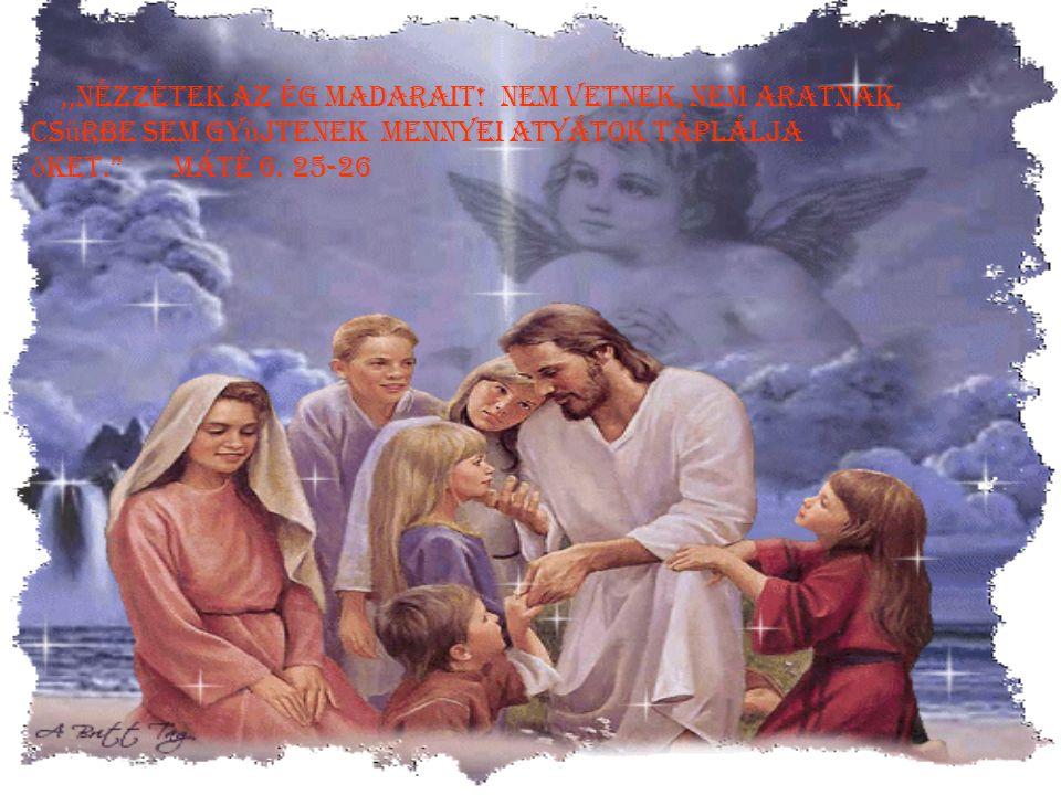 """,,Er ő t ad a megfáradottnak,és az er ő tlen erejét megsokasítja """" Ézsaiás 40. 29"""