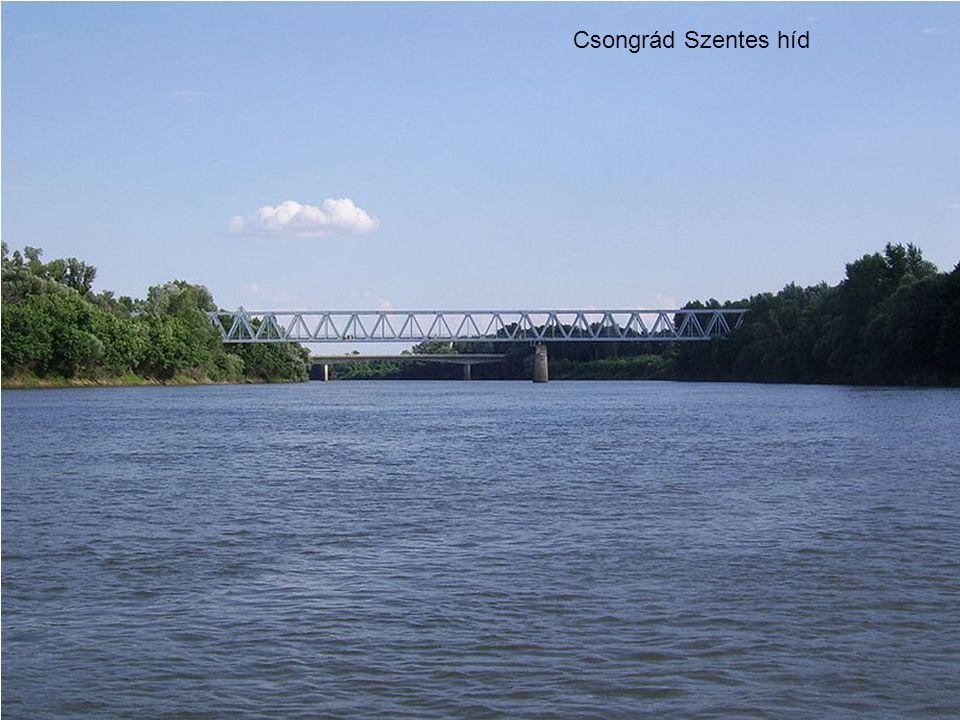 Csongrád Szentes híd