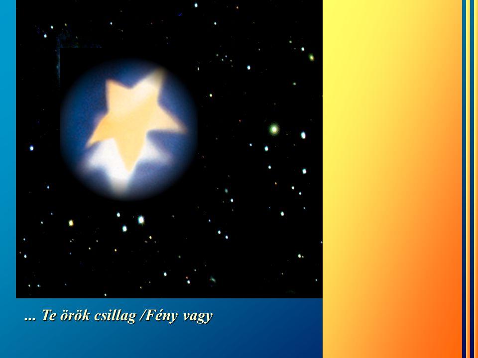 Tudjuk, ha a csillagok ki is alusznak …