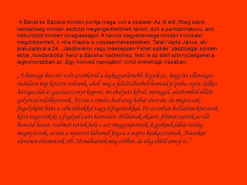 A Bánát és Bácska minden pontja maga volt a csatatér. Az itt élő, főleg szerb nemzetiség minden eszközt megengedhetőnek tartott, dúlt a partizánháború