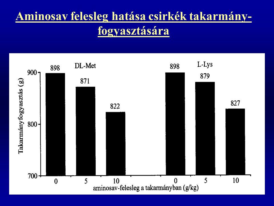 Aminosav felesleg hatása csirkék takarmány- fogyasztására