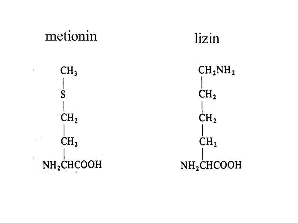 metionin lizin