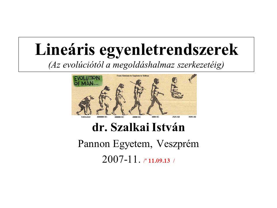 Lineáris egyenletrendszerek (Az evolúciótól a megoldáshalmaz szerkezetéig) dr. Szalkai István Pannon Egyetem, Veszprém 2007-11. /' 11.09.13 /
