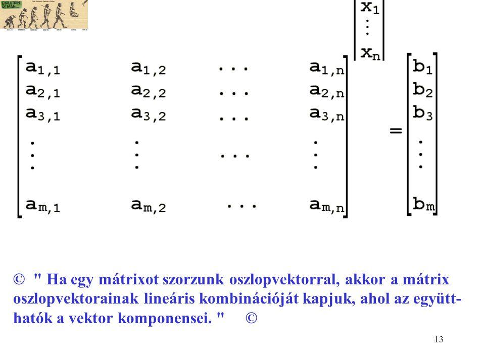 13 © Ha egy mátrixot szorzunk oszlopvektorral, akkor a mátrix oszlopvektorainak lineáris kombinációját kapjuk, ahol az együtt- hatók a vektor komponensei.
