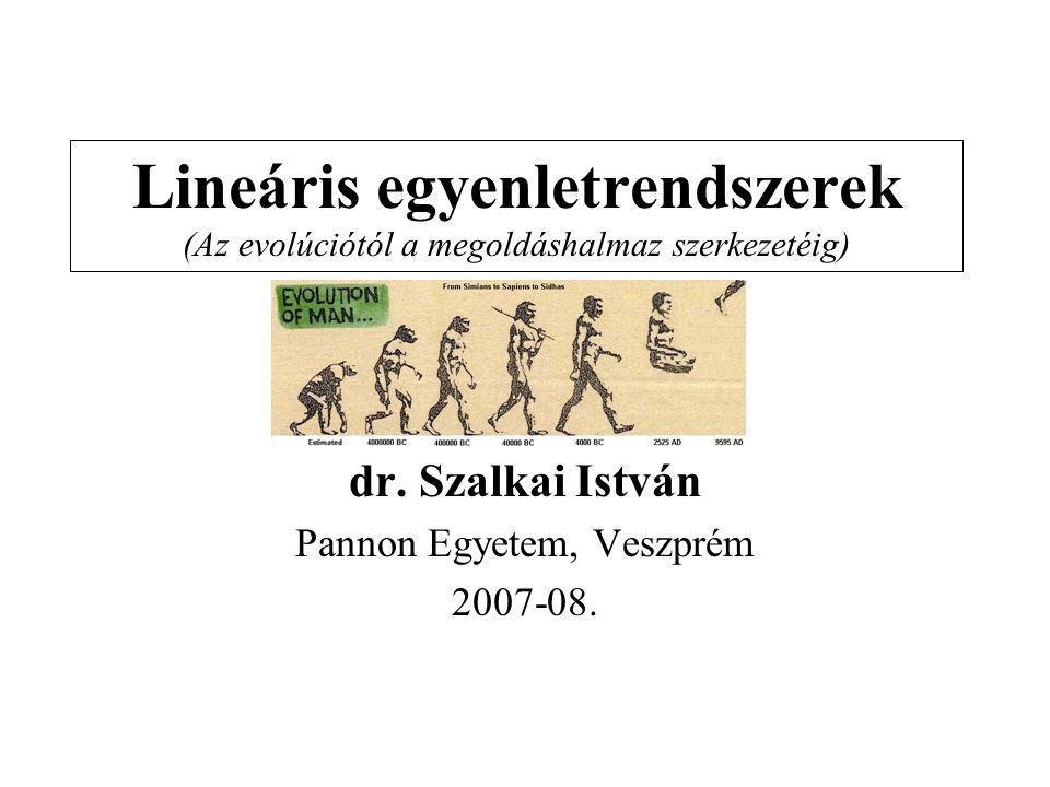 Lineáris egyenletrendszerek (Az evolúciótól a megoldáshalmaz szerkezetéig) dr. Szalkai István Pannon Egyetem, Veszprém 2007-08.