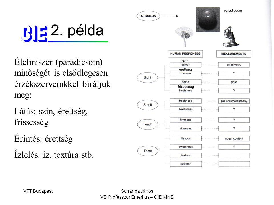 VTT-BudapestSchanda János VE-Professzor Emeritus – CIE-MNB Felületi textúra Optikai megjelenés –finom – durva –sima – érdes –matt – pettyes –szabályos – szabálytalan Fizikai leírás –strukturált –statisztikus –fraktált