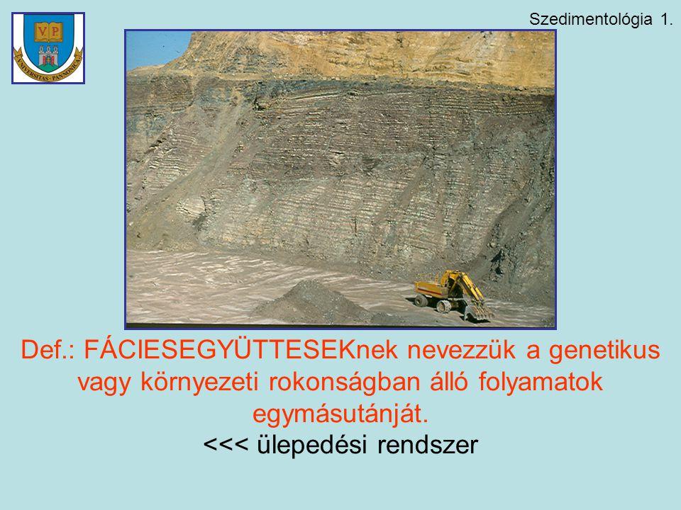Szedimentológia 1. Alapfogalmak > litofácies > biofácies > szeizmikus fácies LEÍRÓ ÉS NEM ÉRTELMEZŐ !!! Fácies << üledékképződési folyamat Def.: FÁCIE