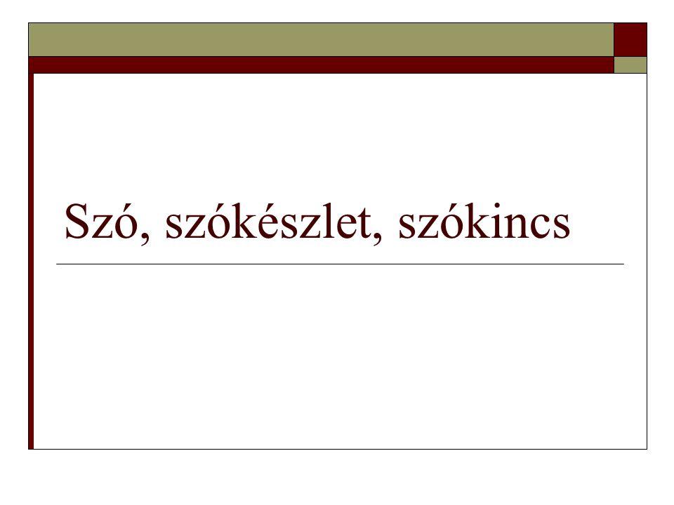  A szótártan vagy lexikográfia a szótárszerkesztés elvi és gyakorlati vonatkozásait vizsgálja.