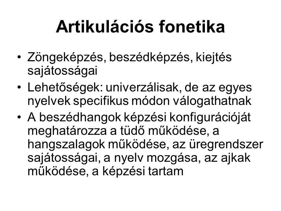 Artikulációs fonetika Zöngeképzés, beszédképzés, kiejtés sajátosságai Lehetőségek: univerzálisak, de az egyes nyelvek specifikus módon válogathatnak A