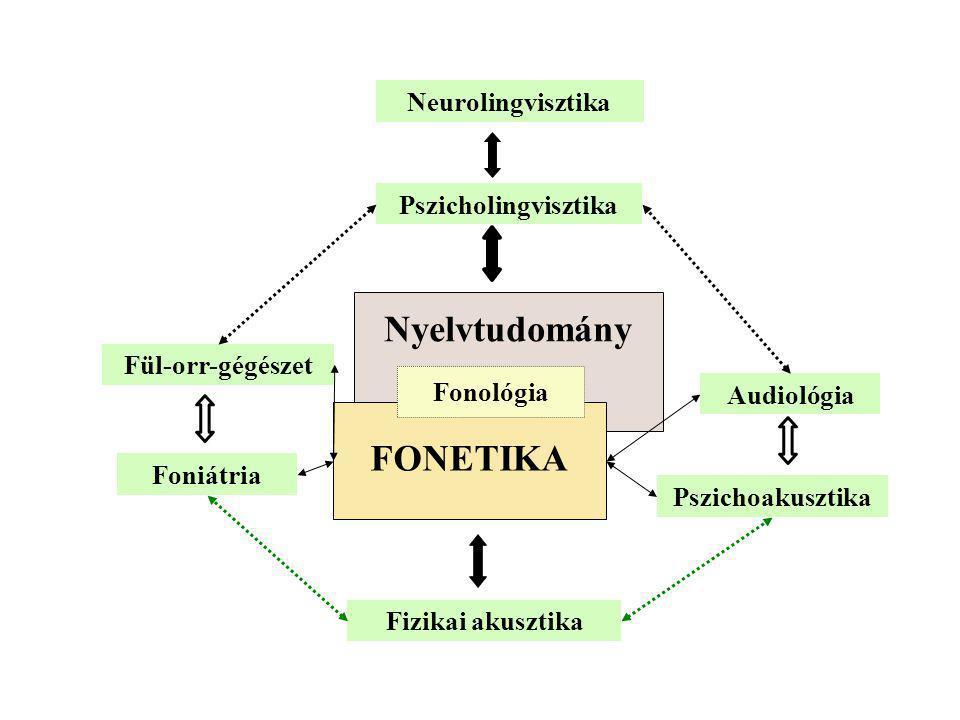 Neurolingvisztika Pszicholingvisztika Fizikai akusztika Nyelvtudomány FONETIKA Fül-orr-gégészet Foniátria Audiológia Pszichoakusztika Fonológia