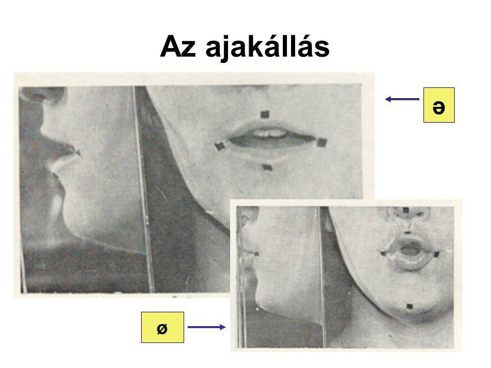 Az ajakállás ə ø
