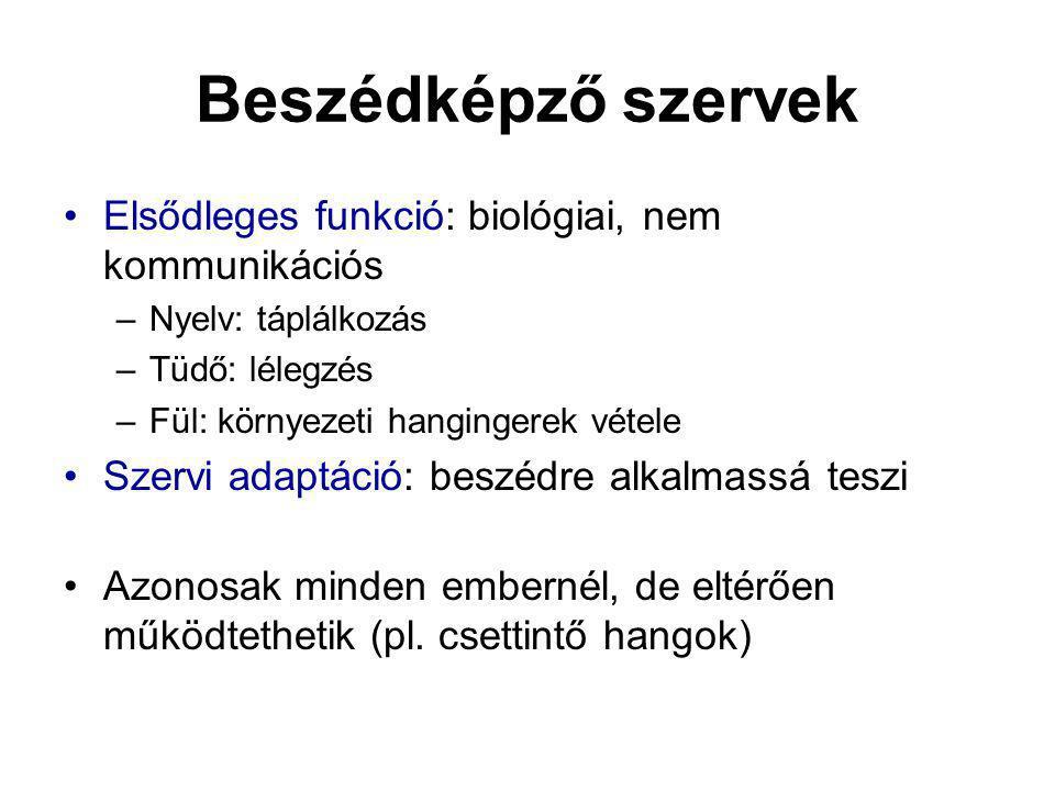 Kétnyelvűek beszédtempó vizsgálata Egynyelvű nyelvi mód: névéletkor Spontán (szótag/sec) irányított átlag (magyar – angol) különbség Tamás122,41,45 (1,17 – 1,72) 0,95 Christopher103,322,98 (3,34 – 2,61) 0,34 Szilvi233,422,42 (2,57 – 2,27) 1,0 Kétnyelvű nyelvi mód: névéletkor Spontán (szótag/sec) irányított átlag (magyar – angol) különbség Mark482,52,39 (1,96 – 2,83)0,11 Éva584,13,04 (3,13 – 2,95)1,06 Mihály383,252,51 (2,81 – 2,21)0,74 Tim213,23,39 (3,39 – 3,38)0,19 Zsuzsi303,822,97 (2,74 – 3,2)0,85