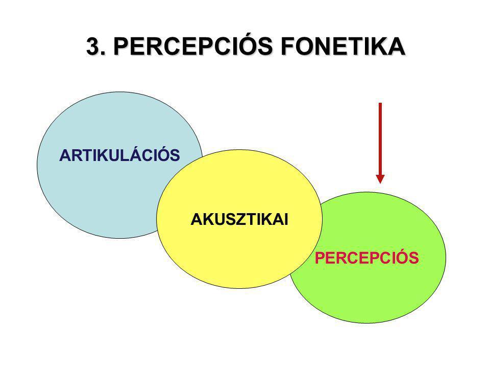 PERCEPCIÓS 3. PERCEPCIÓS FONETIKA ARTIKULÁCIÓS AKUSZTIKAI