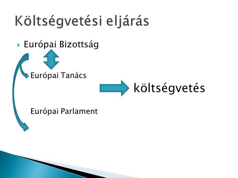  Európai Bizottság Európai Tanács költségvetés Európai Parlament