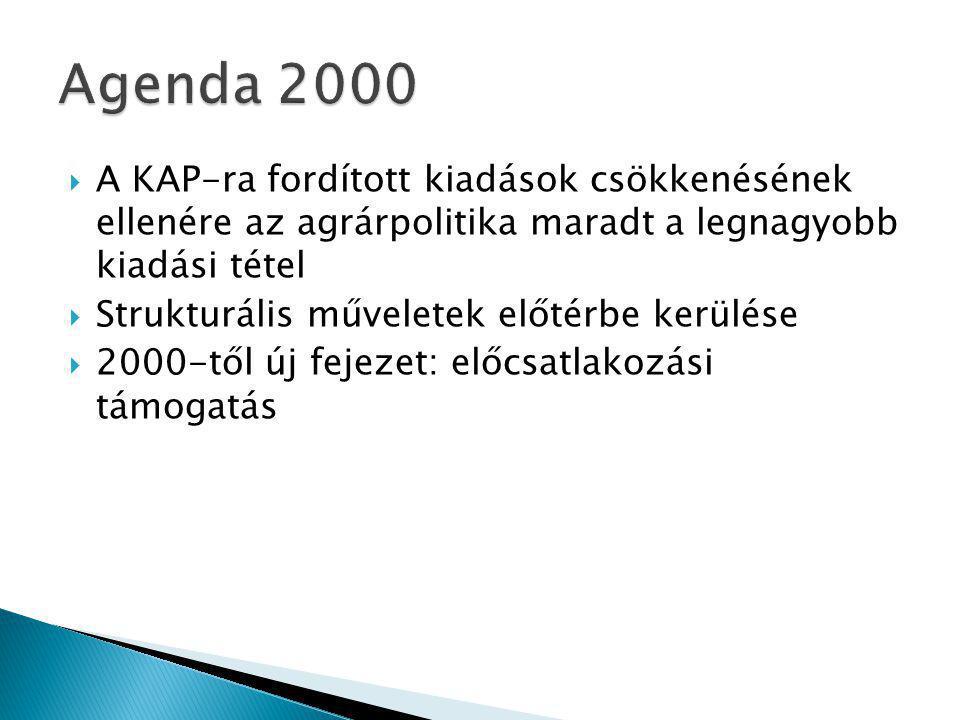  A KAP-ra fordított kiadások csökkenésének ellenére az agrárpolitika maradt a legnagyobb kiadási tétel  Strukturális műveletek előtérbe kerülése  2000-től új fejezet: előcsatlakozási támogatás