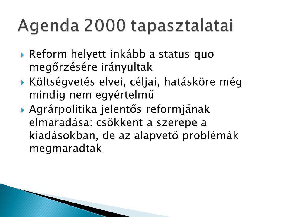  Reform helyett inkább a status quo megőrzésére irányultak  Költségvetés elvei, céljai, hatásköre még mindig nem egyértelmű  Agrárpolitika jelentős reformjának elmaradása: csökkent a szerepe a kiadásokban, de az alapvető problémák megmaradtak