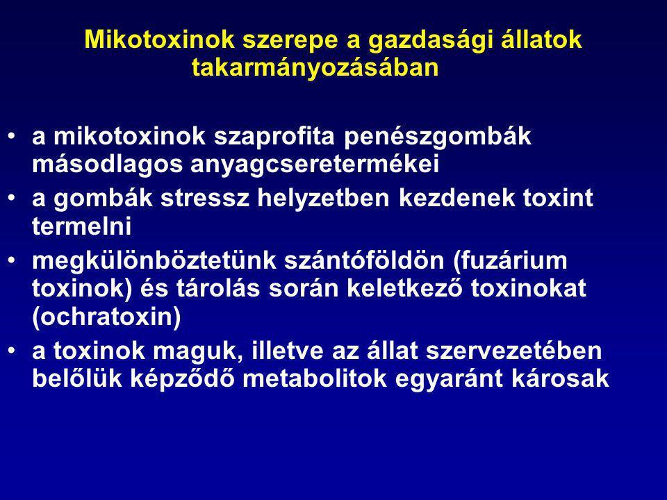 Mikotoxinok szerepe a gazdasági állatok takarmányozásában a mikotoxinok szaprofita penészgombák másodlagos anyagcseretermékei a gombák stressz helyzet