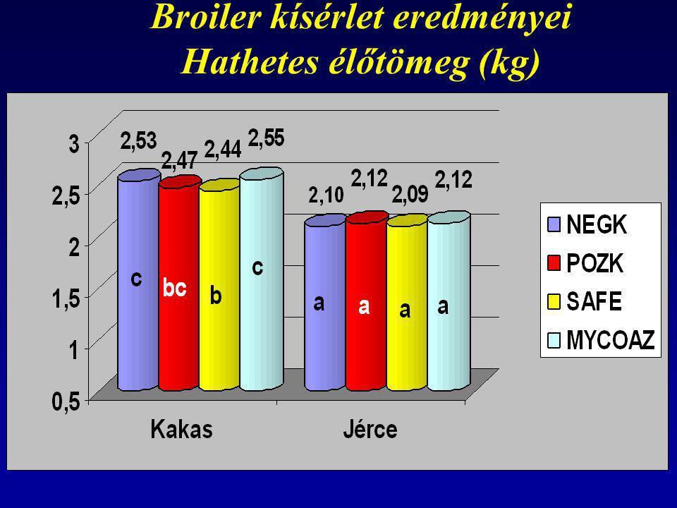 Broiler kísérlet eredményei Hathetes élőtömeg (kg)