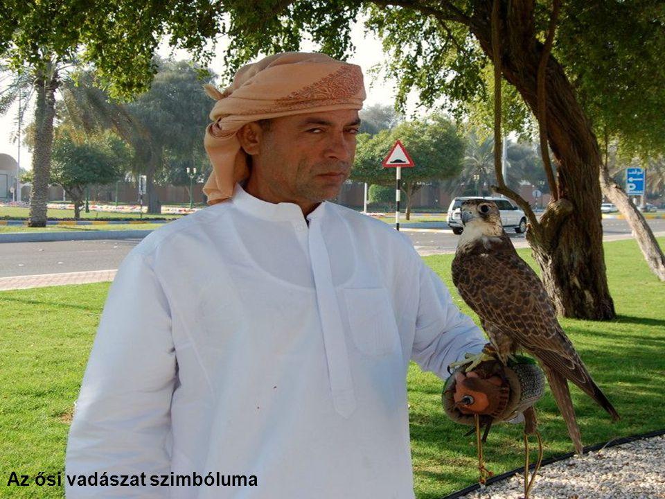 Abu Dhabi - Az Emirates Palace Hotel-sétány