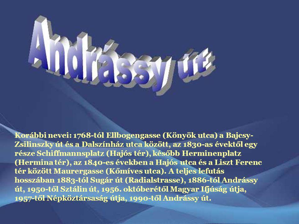 Korábbi nevei: 1768-tól Ellbogengasse (Könyök utca) a Bajcsy- Zsilinszky út és a Dalszínház utca között, az 1830-as évektől egy része Schiffmannsplatz