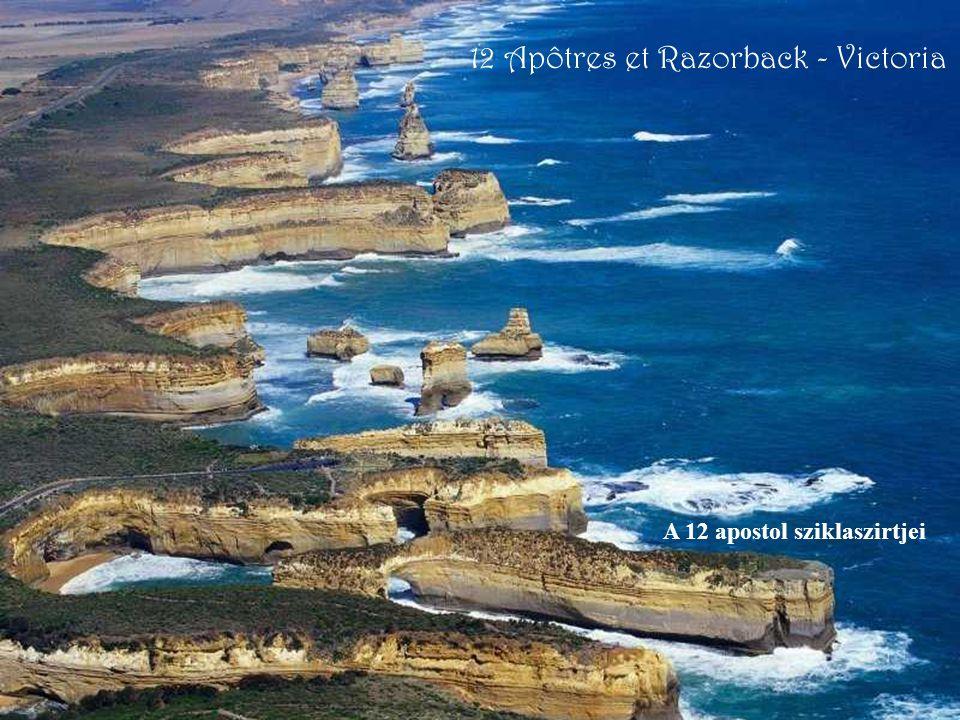 12 Apôtres et Razorback - Victoria A 12 apostol sziklaszirtjei