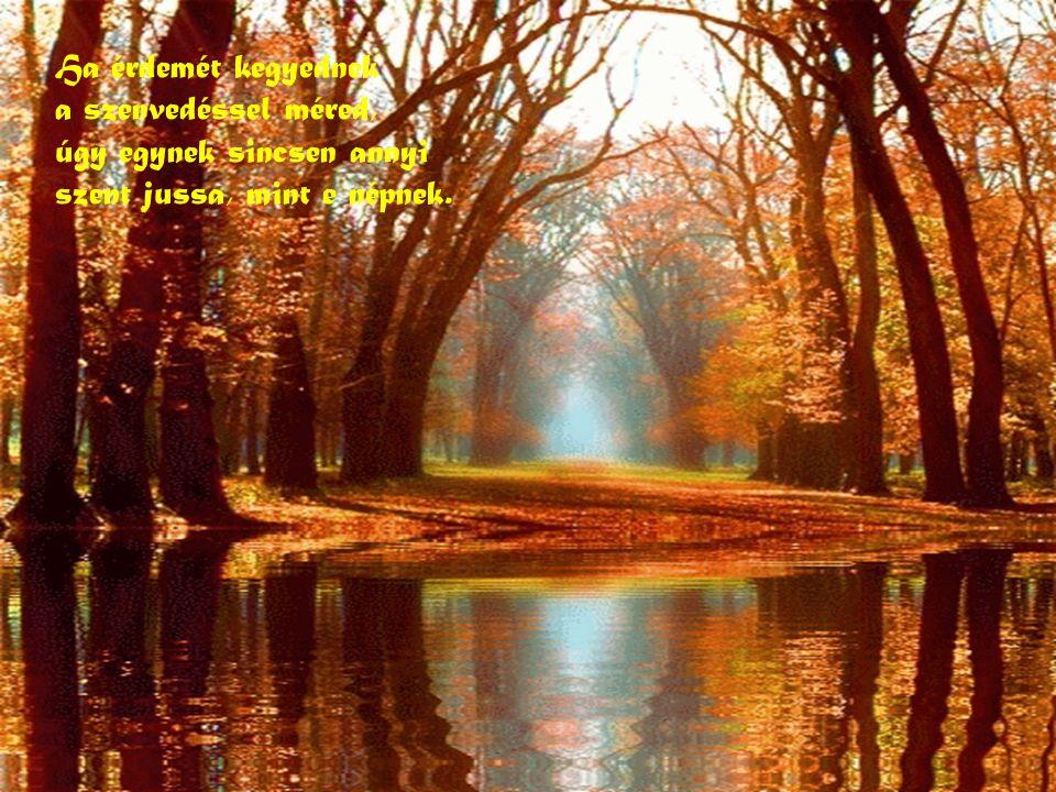 S ha mindeneket szépen elrendeztél ekképpen: a népek közt, Uram nekem is van egy népem.