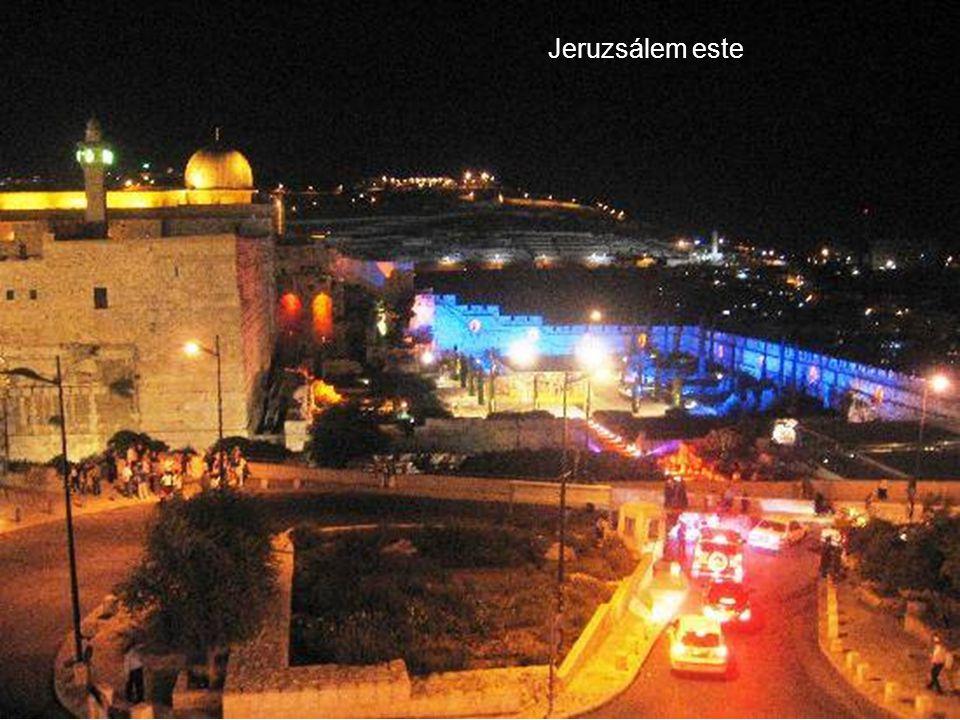 Jeruzsálem Izrael fővárosa, a Holt tenger északi végétől 30km- re helyezkedik el.