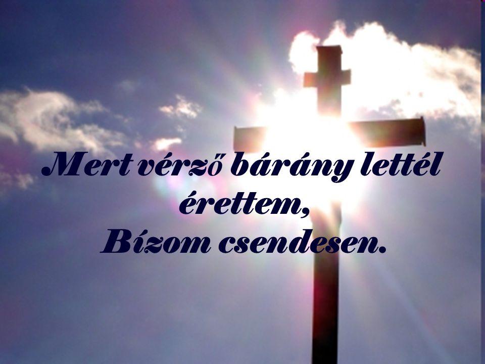 Mert vérz ő bárány lettél érettem, Bízom csendesen.
