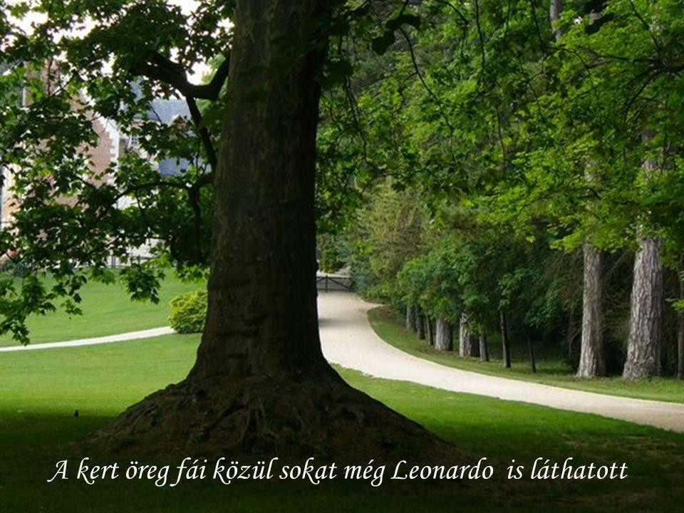 A kert öreg fái közül sokat még Leonardo is láthatott