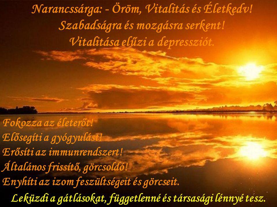 A narancsszín maga az Élet! Ezeknek a képeknek gyógyító erejük van! Egészséget, boldogságot és sikert hoz mindenkinek, aki láthatja!