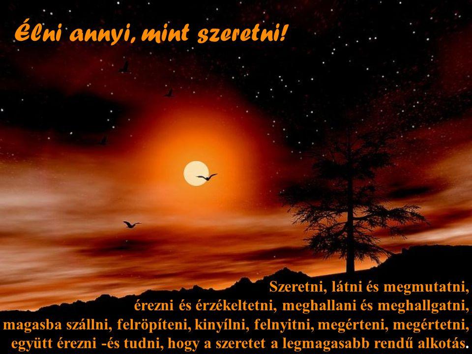 Aludj keveset! De álmodj többet! Hisz minden behunyt szemmel töltött perccel hatvan másodpercnyi fényt vesztesz.