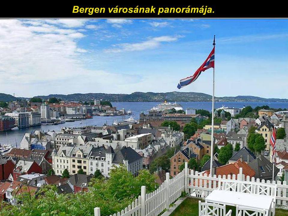 Sok háztető Bergen régi városrészében.
