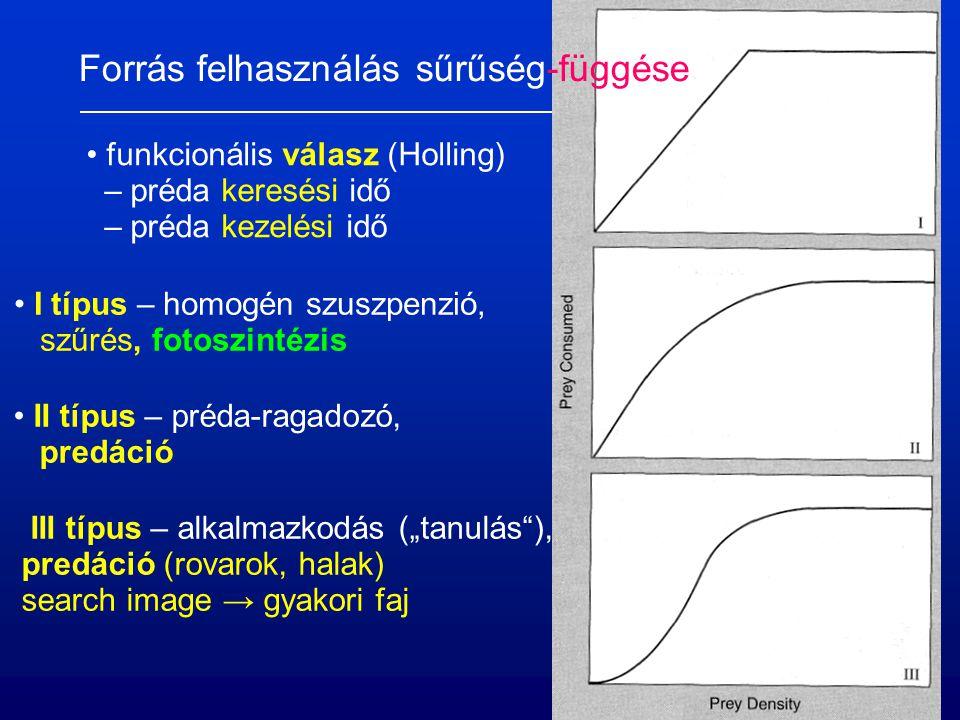 """Forrás felhasználás sűrűség-függése funkcionális válasz (Holling) – préda keresési idő – préda kezelési idő I típus – homogén szuszpenzió, szűrés, fotoszintézis II típus – préda-ragadozó, predáció III típus – alkalmazkodás (""""tanulás ), predáció (rovarok, halak) search image → gyakori faj"""