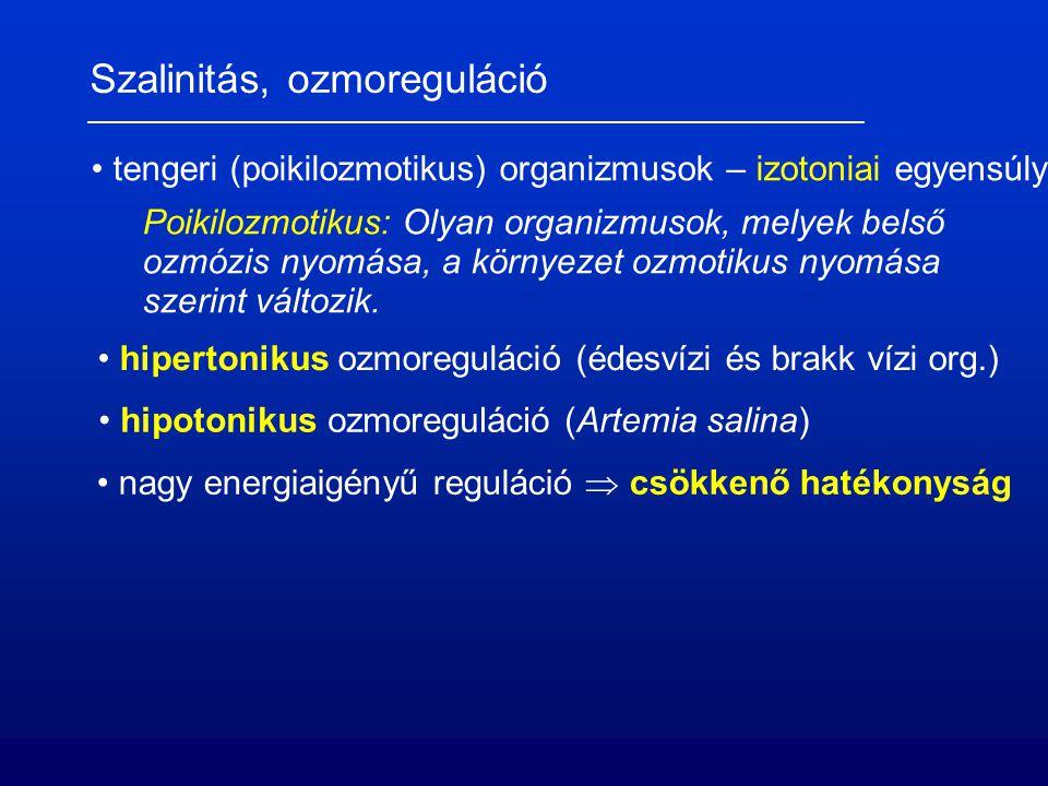 Szalinitás, ozmoreguláció tengeri (poikilozmotikus) organizmusok – izotoniai egyensúly hipertonikus ozmoreguláció (édesvízi és brakk vízi org.) hipotonikus ozmoreguláció (Artemia salina) nagy energiaigényű reguláció  csökkenő hatékonyság Poikilozmotikus: Olyan organizmusok, melyek belső ozmózis nyomása, a környezet ozmotikus nyomása szerint változik.