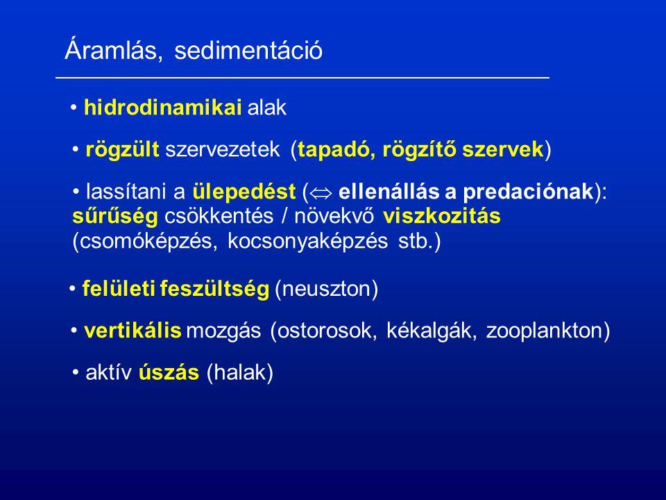Áramlás, sedimentáció hidrodinamikai alak rögzült szervezetek (tapadó, rögzítő szervek) lassítani a ülepedést (  ellenállás a predaciónak): sűrűség csökkentés / növekvő viszkozitás (csomóképzés, kocsonyaképzés stb.) felületi feszültség (neuszton) vertikális mozgás (ostorosok, kékalgák, zooplankton) aktív úszás (halak)