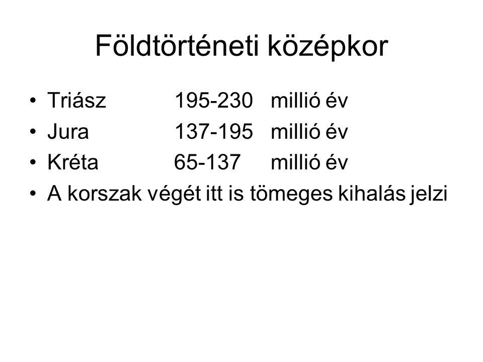 Földtörténeti középkor Triász195-230millió év Jura137-195millió év Kréta65-137millió év A korszak végét itt is tömeges kihalás jelzi