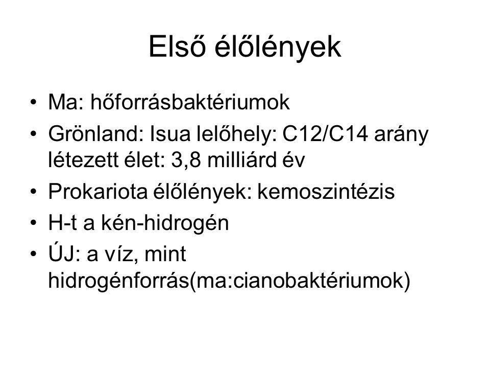 Első élőlények Ma: hőforrásbaktériumok Grönland: Isua lelőhely: C12/C14 arány létezett élet: 3,8 milliárd év Prokariota élőlények: kemoszintézis H-t a