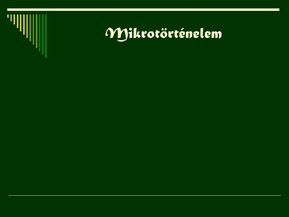 Mikrotörténelem