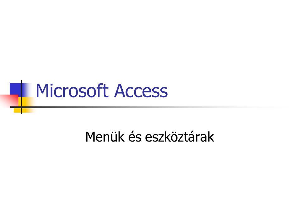 Microsoft Access Menük és eszköztárak