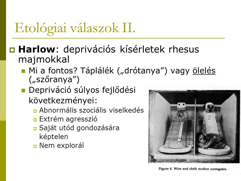 """Etológiai válaszok II.  Harlow: deprivációs kísérletek rhesus majmokkal Mi a fontos? Táplálék (""""drótanya"""") vagy ölelés (""""szőranya"""") Depriváció súlyos"""