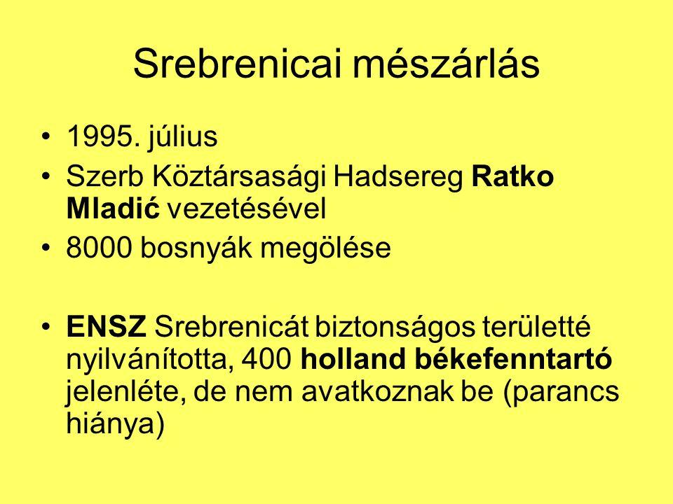 Srebrenicai mészárlás 1995. július Szerb Köztársasági Hadsereg Ratko Mladić vezetésével 8000 bosnyák megölése ENSZ Srebrenicát biztonságos területté n