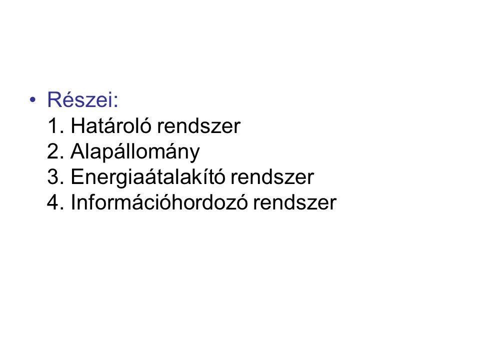 Részei: 1. Határoló rendszer 2. Alapállomány 3. Energiaátalakító rendszer 4. Információhordozó rendszer