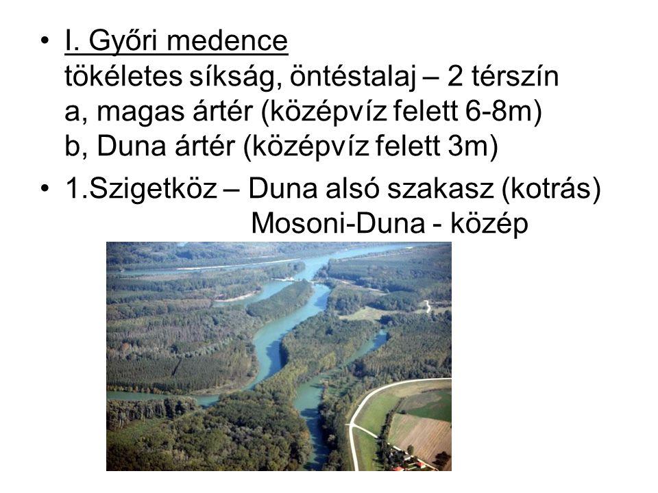 I. Győri medence tökéletes síkság, öntéstalaj – 2 térszín a, magas ártér (középvíz felett 6-8m) b, Duna ártér (középvíz felett 3m) 1.Szigetköz – Duna