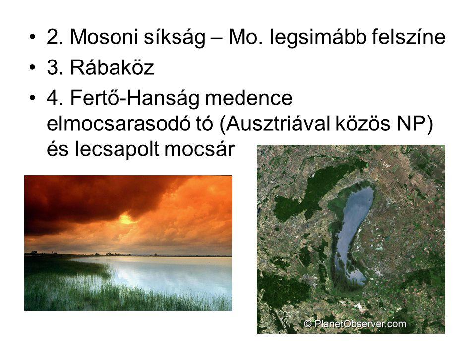 2. Mosoni síkság – Mo. legsimább felszíne 3. Rábaköz 4. Fertő-Hanság medence elmocsarasodó tó (Ausztriával közös NP) és lecsapolt mocsár