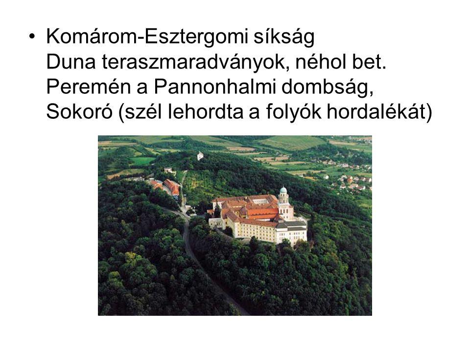 Komárom-Esztergomi síkság Duna teraszmaradványok, néhol bet. Peremén a Pannonhalmi dombság, Sokoró (szél lehordta a folyók hordalékát)