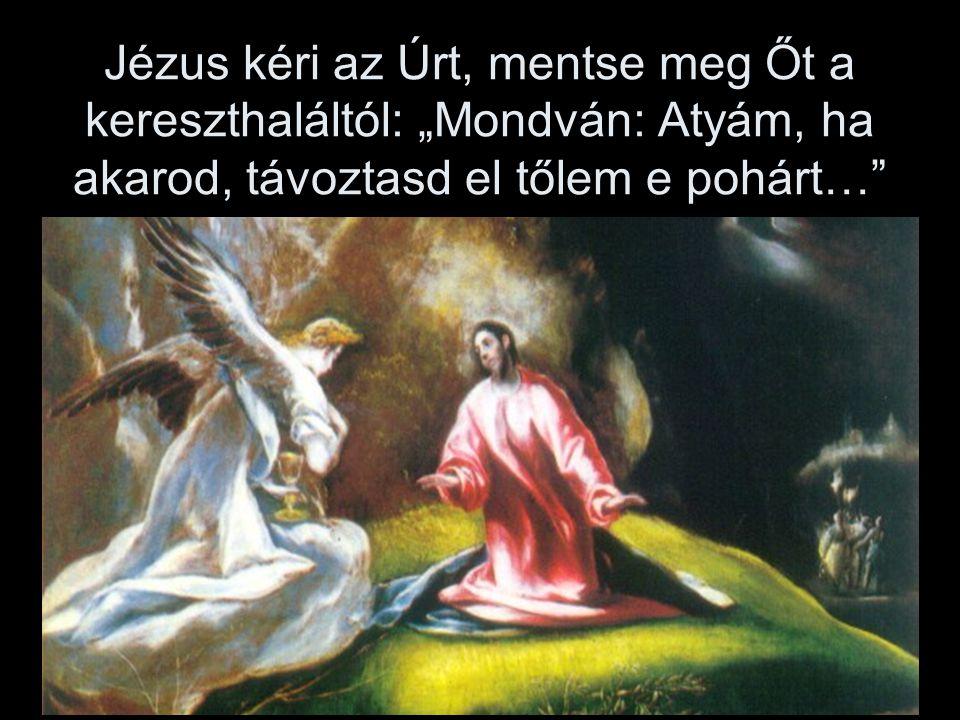 """Jézus kéri az Úrt, mentse meg Őt a kereszthaláltól: """"Mondván: Atyám, ha akarod, távoztasd el tőlem e pohárt…"""
