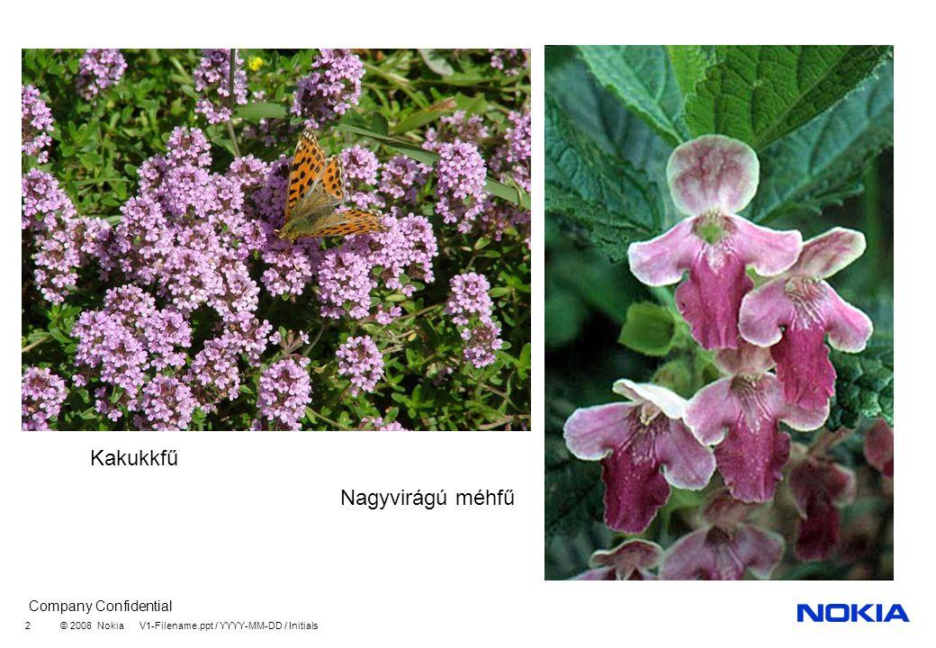 Company Confidential © 2008 Nokia V1-Filename.ppt / YYYY-MM-DD / Initials 13 Fűzfafélék családja Fehér fűz Fehér nyár