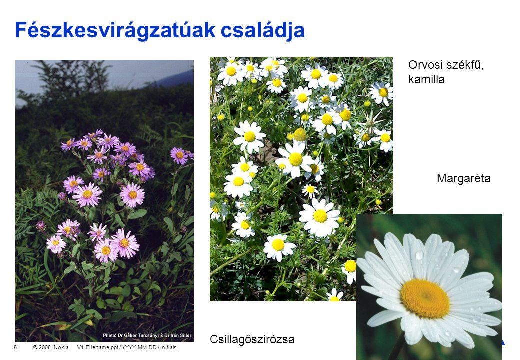 Company Confidential © 2008 Nokia V1-Filename.ppt / YYYY-MM-DD / Initials 6 Pongyola pitypang Közönséges bojtorján Mezei cickafark