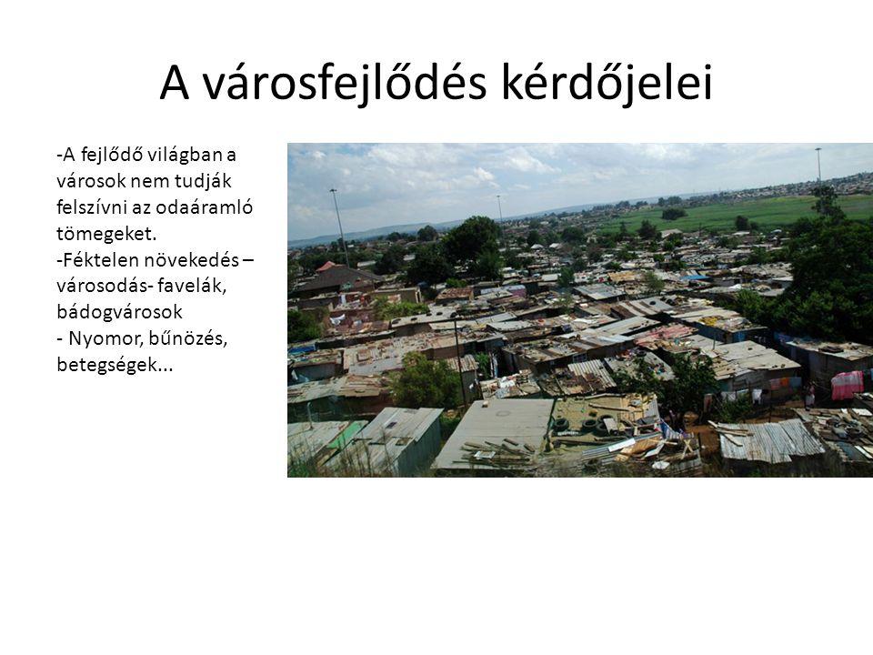 A városfejlődés kérdőjelei -A fejlődő világban a városok nem tudják felszívni az odaáramló tömegeket. -Féktelen növekedés – városodás- favelák, bádogv