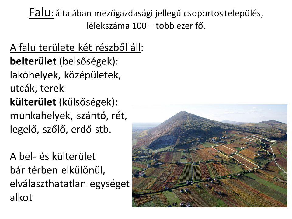 Falu : általában mezőgazdasági jellegű csoportos település, lélekszáma 100 – több ezer fő. A falu területe két részből áll: belterület (belsőségek): l